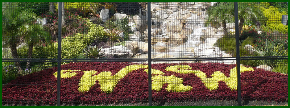 Wet n Wild 2 by Master Horticulture Consulting